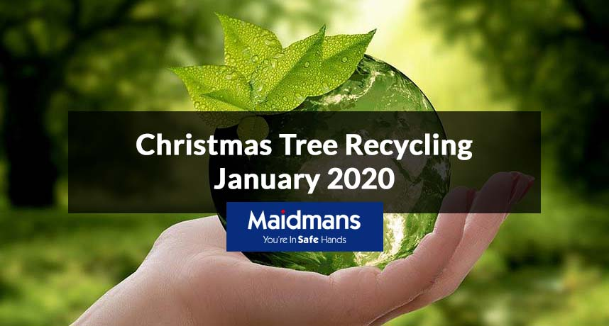 Christmas Tree Recycling January 2020
