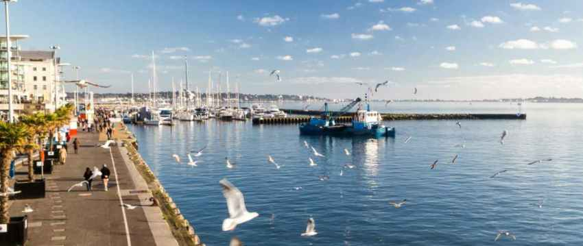 Poole Harbour with boats