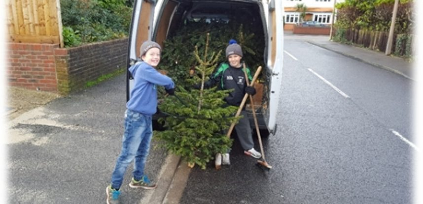 Maidmans to Support Charity Christmas Tree Recycling Scheme