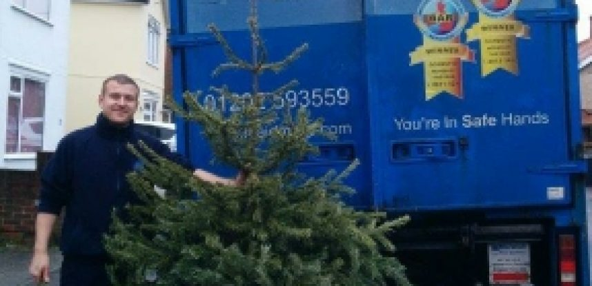 Christmas Tree Recycling: Maidmans Moving & Storage