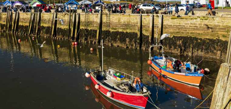 Bridport Harbour with Colourful Fishing Boats